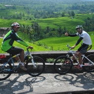 Jatiluwih rice terrace cycling tour with family