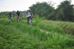 Best Cycling Company in Ubud