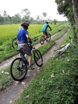 best cycling guide in Bali