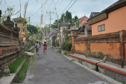 Best cycling tour in Ubud Bali