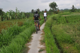 Cycling guide in Ubud