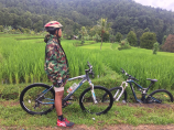 Cycling tour to Munduk Rice Terrace